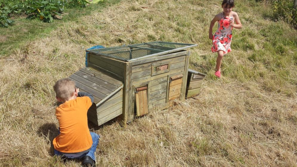 Chicken coup we found abandoned in our plot